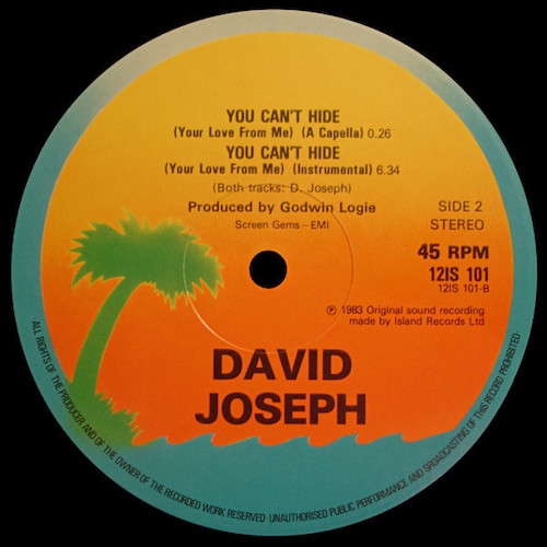 David-Joseph-You-Cant-Hide-B