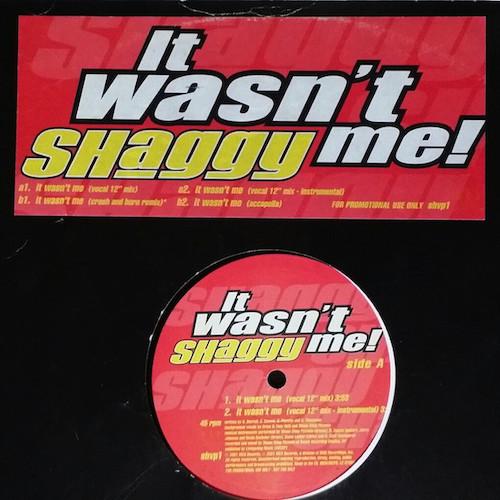 Shaggy-It-Wasntt-Me
